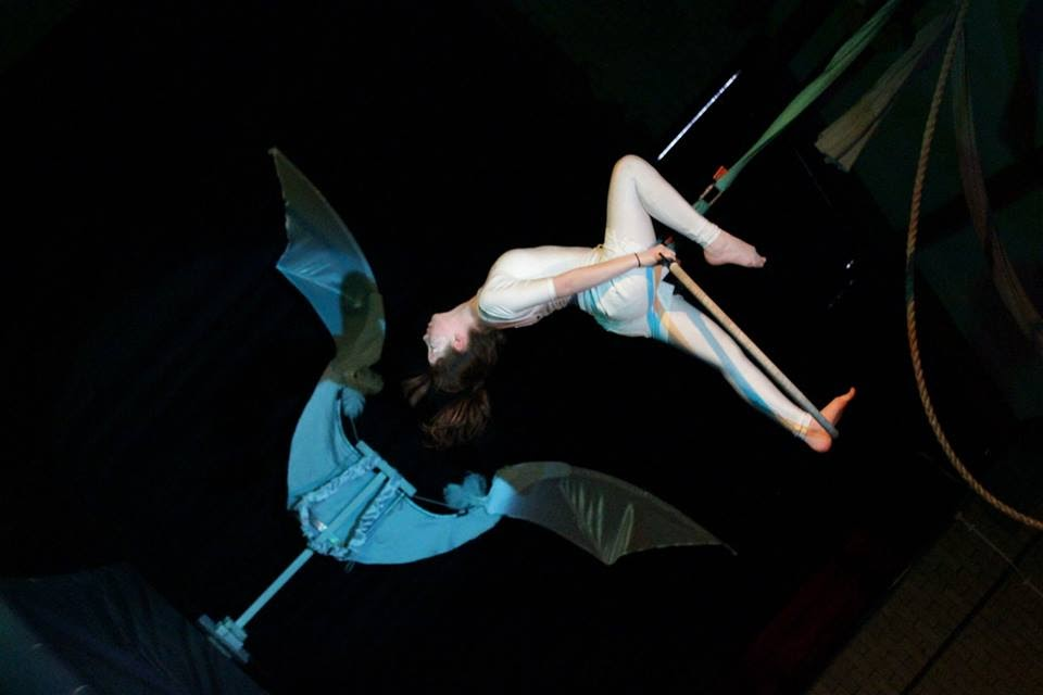 Skylight Circus NW angel on a hoop