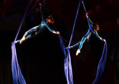 Aerial Silk Performers For Events