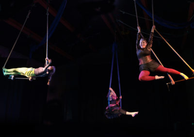 Skylight Circus NW Trapeze Training Classes