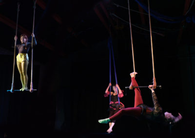 Skylight Circus NW Trapeze Training