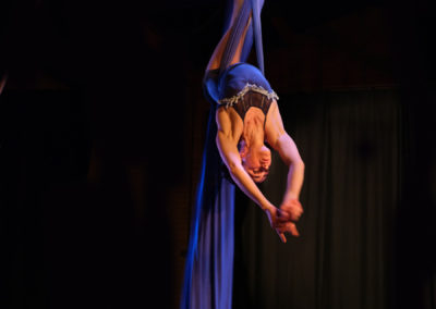 Skylight Silver Circus NW Aerial Silk Training
