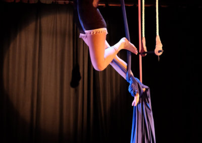 Skylight Circus Manchester NW Adult Aerial Training