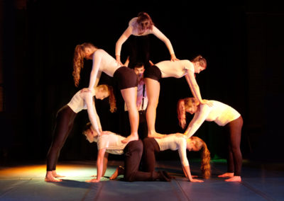 Skylight Circus NW Acrobatic Artists