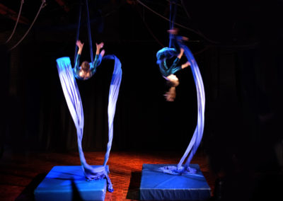 Skylight Circus NW Aerial Artists